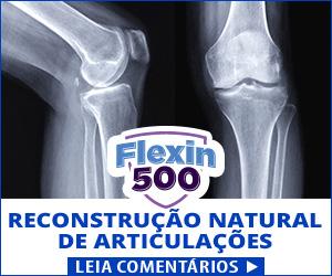 Flexin500 - articulações